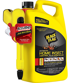 Extreme Home Insect Control Plus Germ Killer (AccuShot® Sprayer)